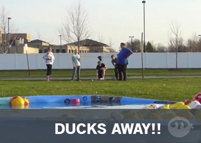 Ducks Away!!